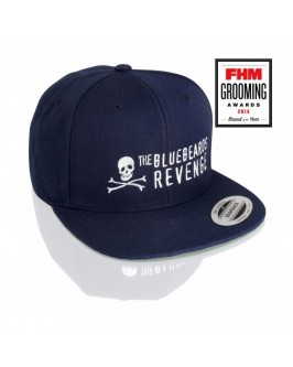 Кепка The Blueberds Revenge Snapback Hat